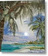 Coconut Beach Metal Print