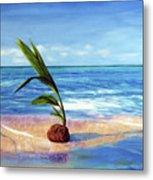 Coconut On Beach Metal Print