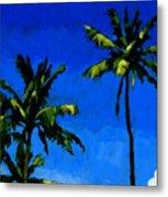 Coconut Palms 5 Metal Print