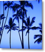 Coconut Palms At Dawn Metal Print