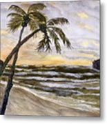 Coconut Palms On Cloudy Day Metal Print
