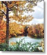 Coe Lake Fall Series 1a Metal Print