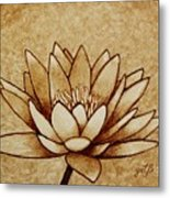 Coffee Painting Water Lilly Blooming Metal Print