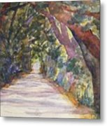 Coffin Point Road Metal Print by Stella Schaefer