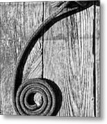 Coiled Metal Print