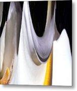 Cold Calla Poles Metal Print