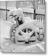 Cold Disposition Metal Print