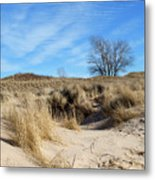 Cold Dune Day Metal Print