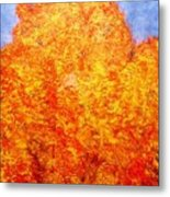 Cold Fire Metal Print