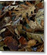 Cold Leaves Metal Print
