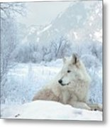 Cold Longings Metal Print