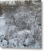 Cold Morning Metal Print