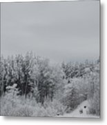 Cold Mountain Metal Print