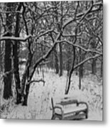 Cold Seat Metal Print