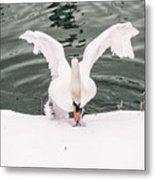 Cold Water Metal Print