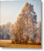 Cold Winter Evening In The Valley Metal Print