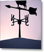 Cold Winter Sky Metal Print