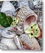 Collections Metal Print