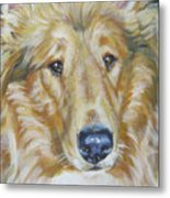 Collie Close Up Metal Print