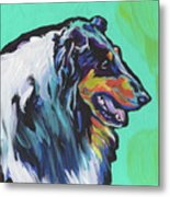 Collie Collie Metal Print