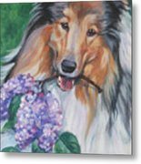Collie With Lilacs Metal Print by Lee Ann Shepard