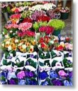 Cologne Flowers Metal Print