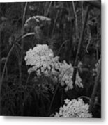Colonial Garden At Twilight Metal Print