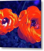 Color 12 Metal Print