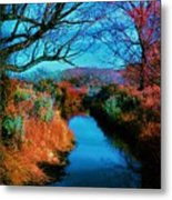 Color Along The River Metal Print