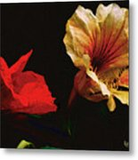 Color And Light Suspended Metal Print