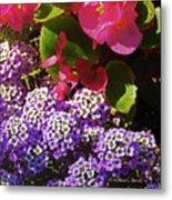 Color Combination Flowers Cc63 Metal Print