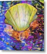 Color In Shell Metal Print