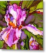 Color Me Iris Metal Print