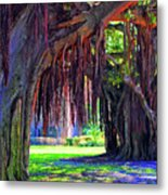 Color Of Nature Metal Print