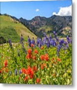 Color Of Summer Metal Print
