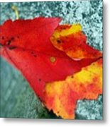 Color On A Grave Metal Print