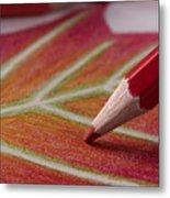 Color Pencil Drawing Metal Print