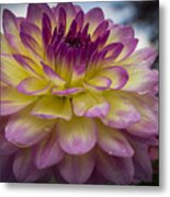 Color Starburst Metal Print