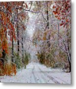 Color Tunnel In The Sourlands Metal Print