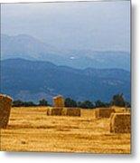 Colorado Agriculture Farming Panorama View Metal Print
