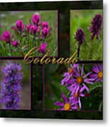 Colorado Beauty Metal Print