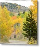 Colorado Colors Metal Print