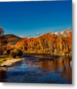 Colorado Cottonwoods In Autumn Metal Print