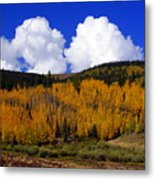 Colorado Fall 2 Metal Print
