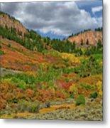 Colorado Fall Colors 1 Metal Print
