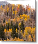 Colorado Fall Foliage Metal Print