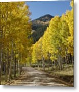 Colorado Fall Splendor Metal Print