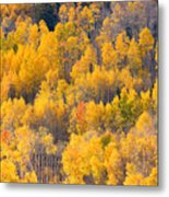 Colorado High Country Autumn Colors Metal Print