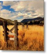 Colorado Meadow Metal Print