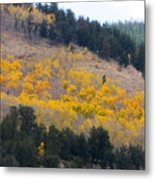 Colorado Mountain Aspen Autumn View Metal Print